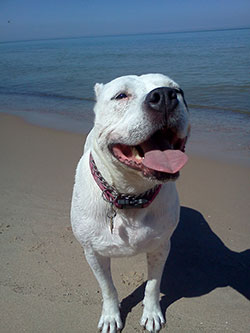 Happy Maya at the beach